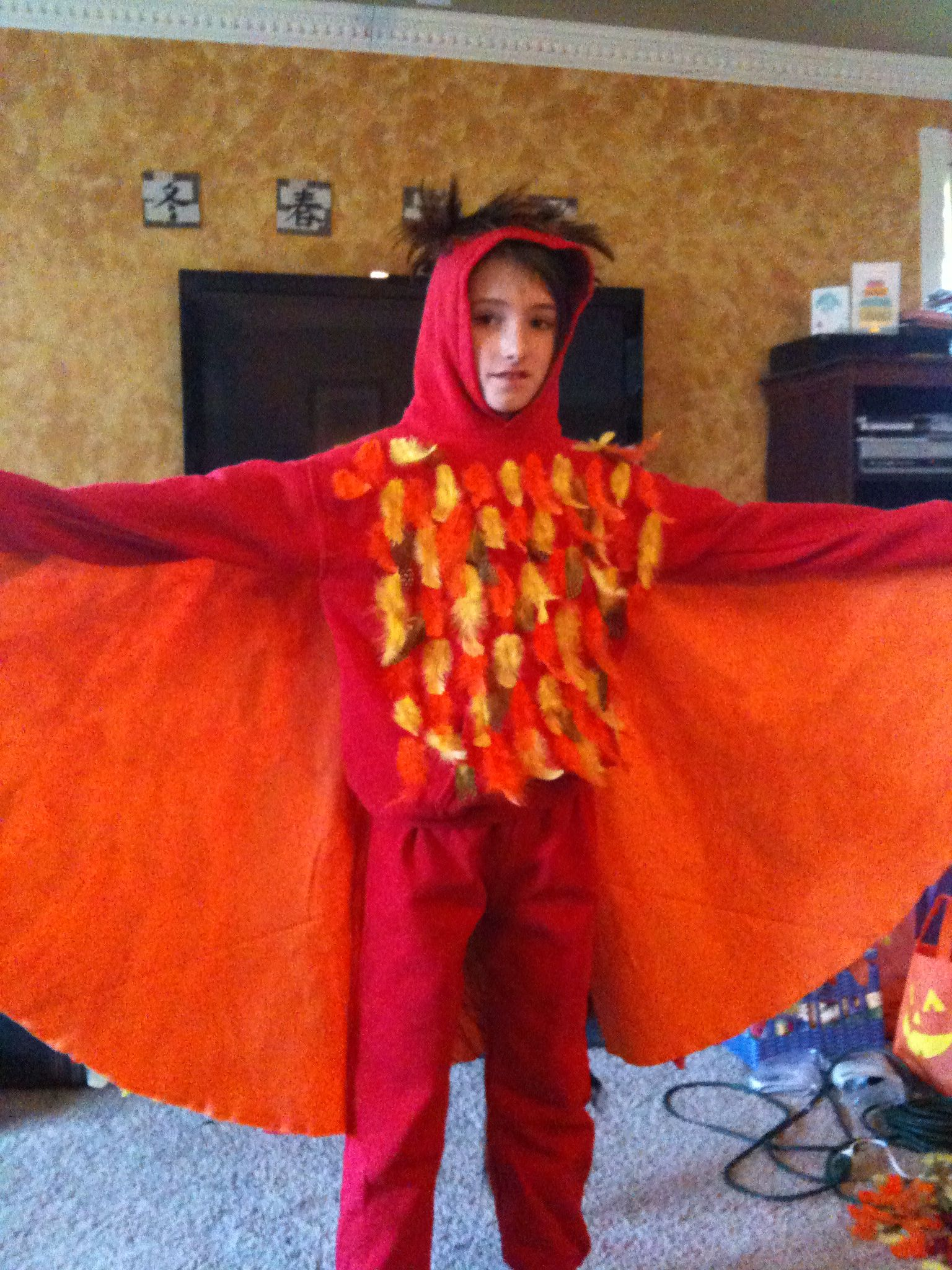 Phoenix costume - Fawkes from Harry Potter.  Front view.  Red sweats, feathers and hot glue, large piece of felt sewn to the sleeves, and a dowel from elbow to wingtip on each side.  Probably the best costume I've made.