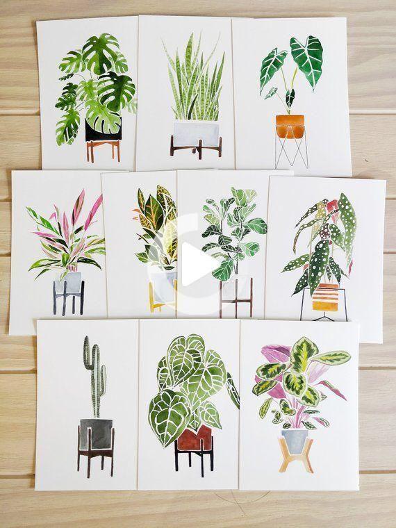 House Plants Postcards (set of 10, 5