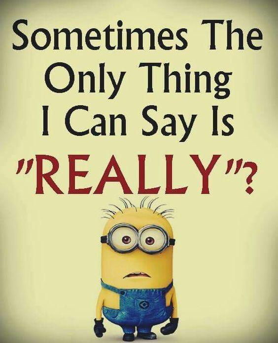 24 Even Funnier Minion Memes   The Funny Beaver #minionmemes