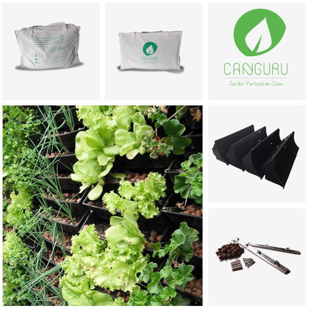 jardin vertical en casa canguru plantas o de consumo with como hacer jardines verticales