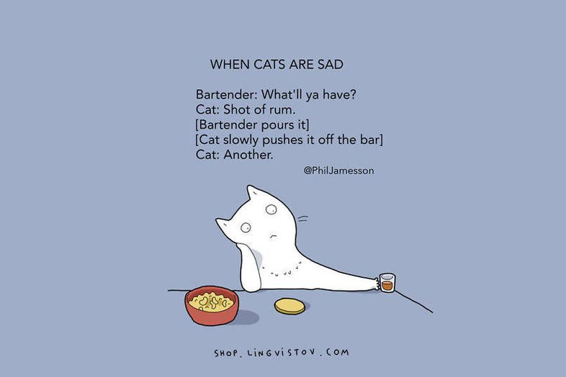Cats seem to be one of the only pets that get away with absolutely EVERYTHING. So, the people over atLingvistovcreated this epic illustration series about cats and all the sh*t you have to put up with when you are a cat owner. It's hilariously accurate.