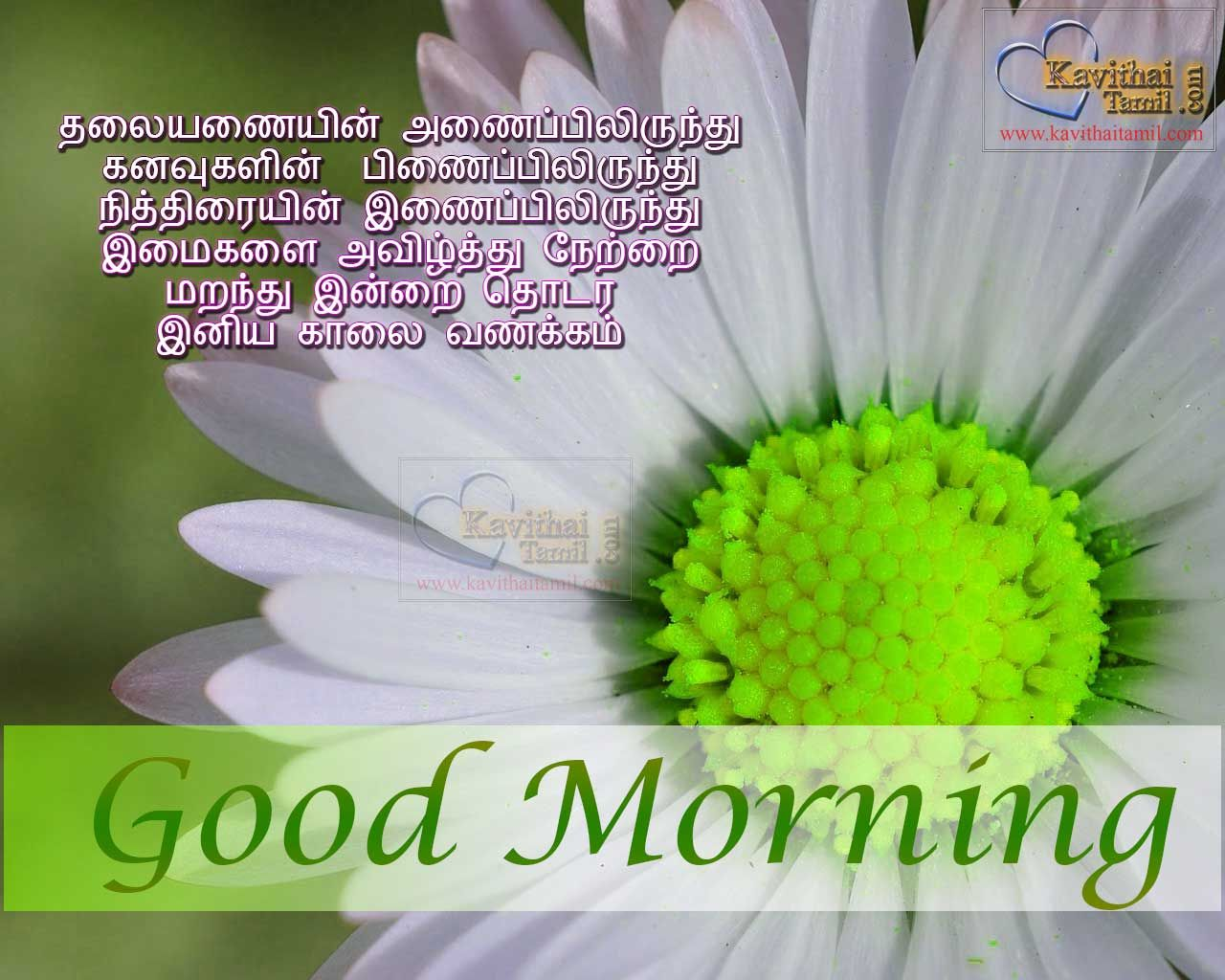 Super Good Morning Wishing Greetings In Tamil Language With Super
