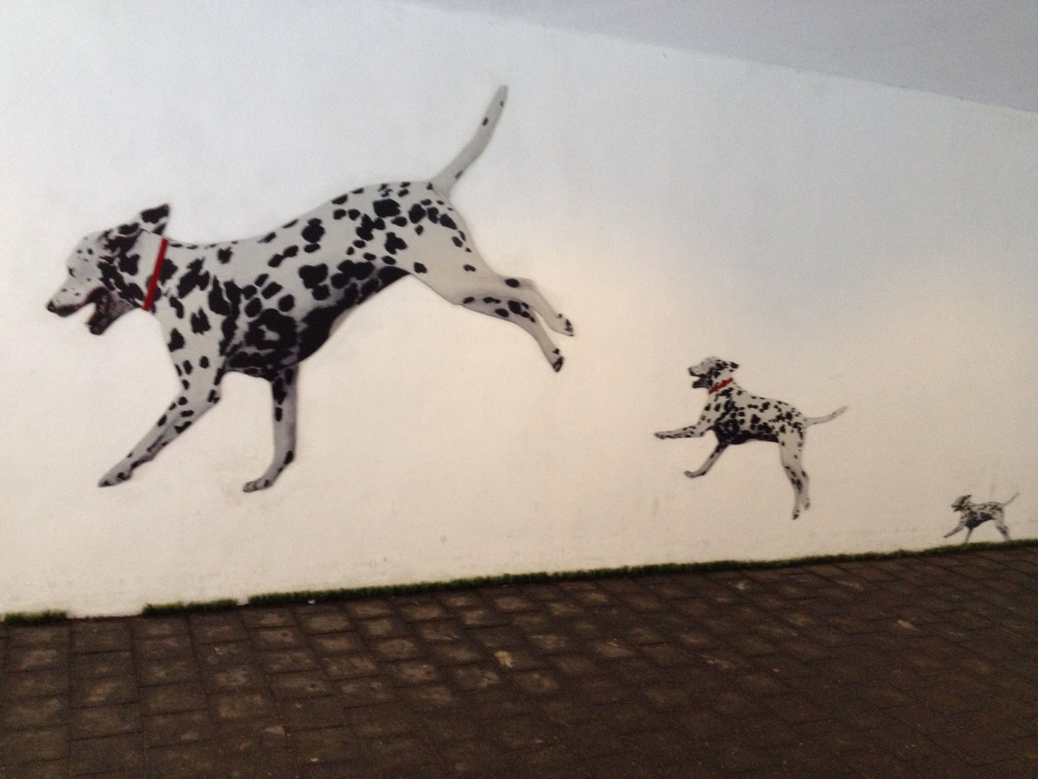Jumping Dalmatians