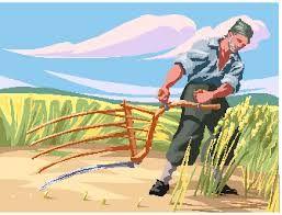 Znalezione obrazy dla zapytania maszyny i narzedzia rolnicze dawniej