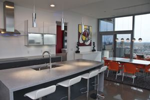 Project Portfolio | Hard Topix - Precast Concrete Countertops | Concrete Sinks | Grand Rapids, MI