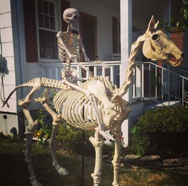 Home Accents Holiday 6 Ft Halloween Standing Skeleton Horse 6342 86676 The Home Depot Life Size Skeleton Horse Decor Garden Theme
