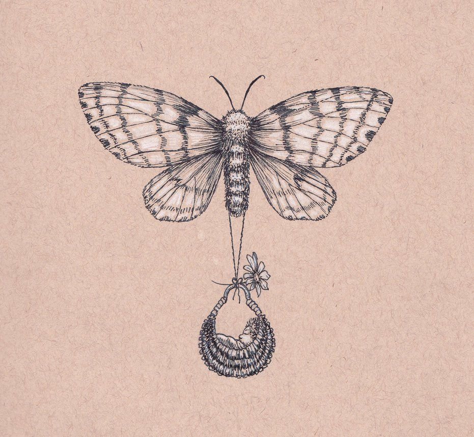 Gypsy Moth and Fairy baby by Margaret Schons
