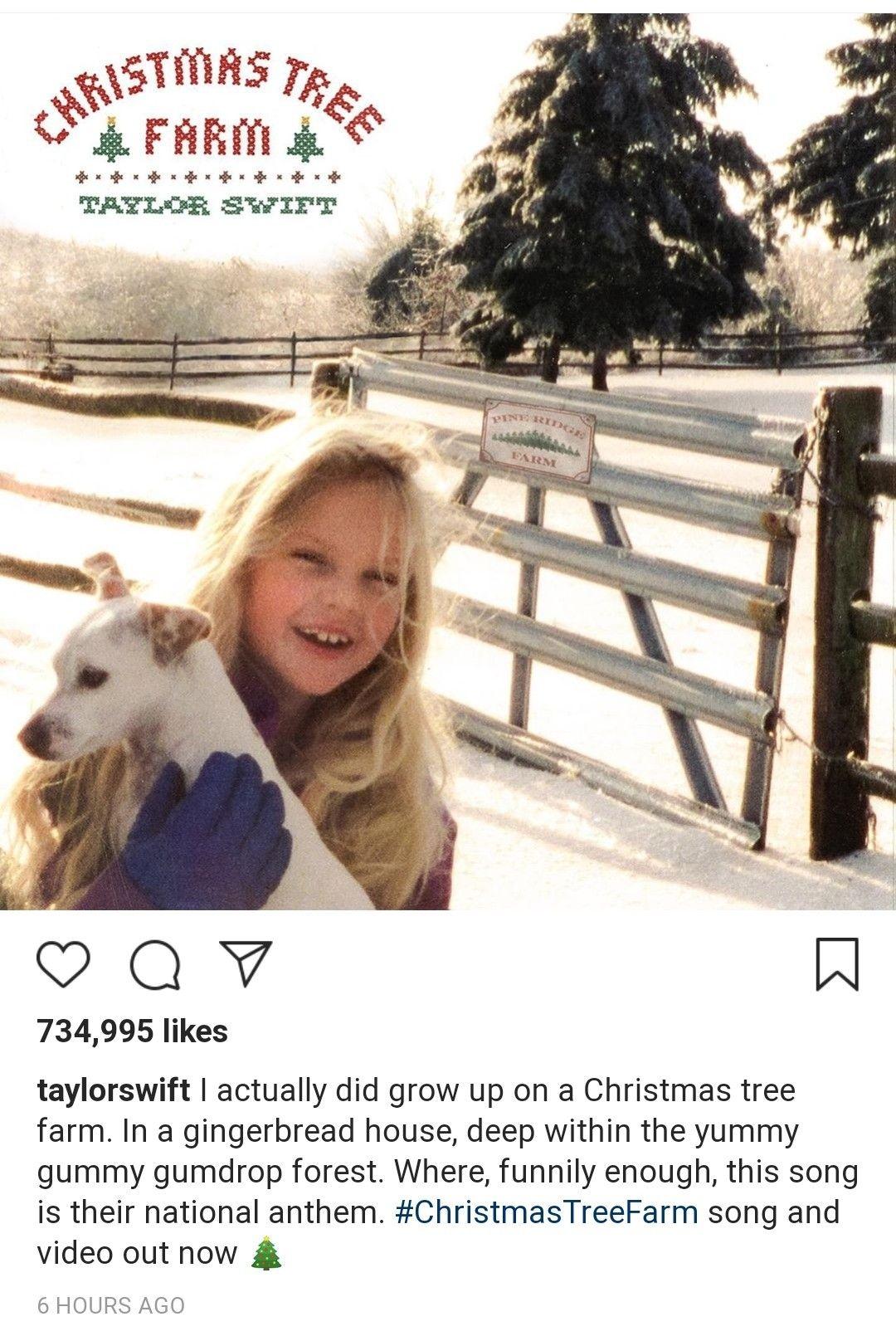 Pin By Anaya On Taylorswift13 Christmas Tree Farm Christmas Tree Gum Drops