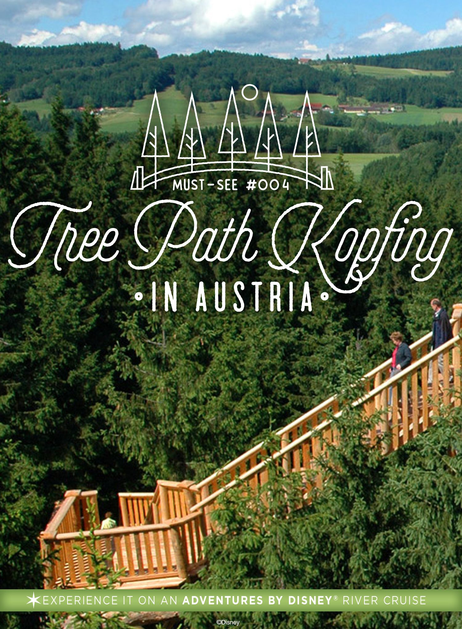 Climb The Famous Tree Path Kopfing On Our River Cruise