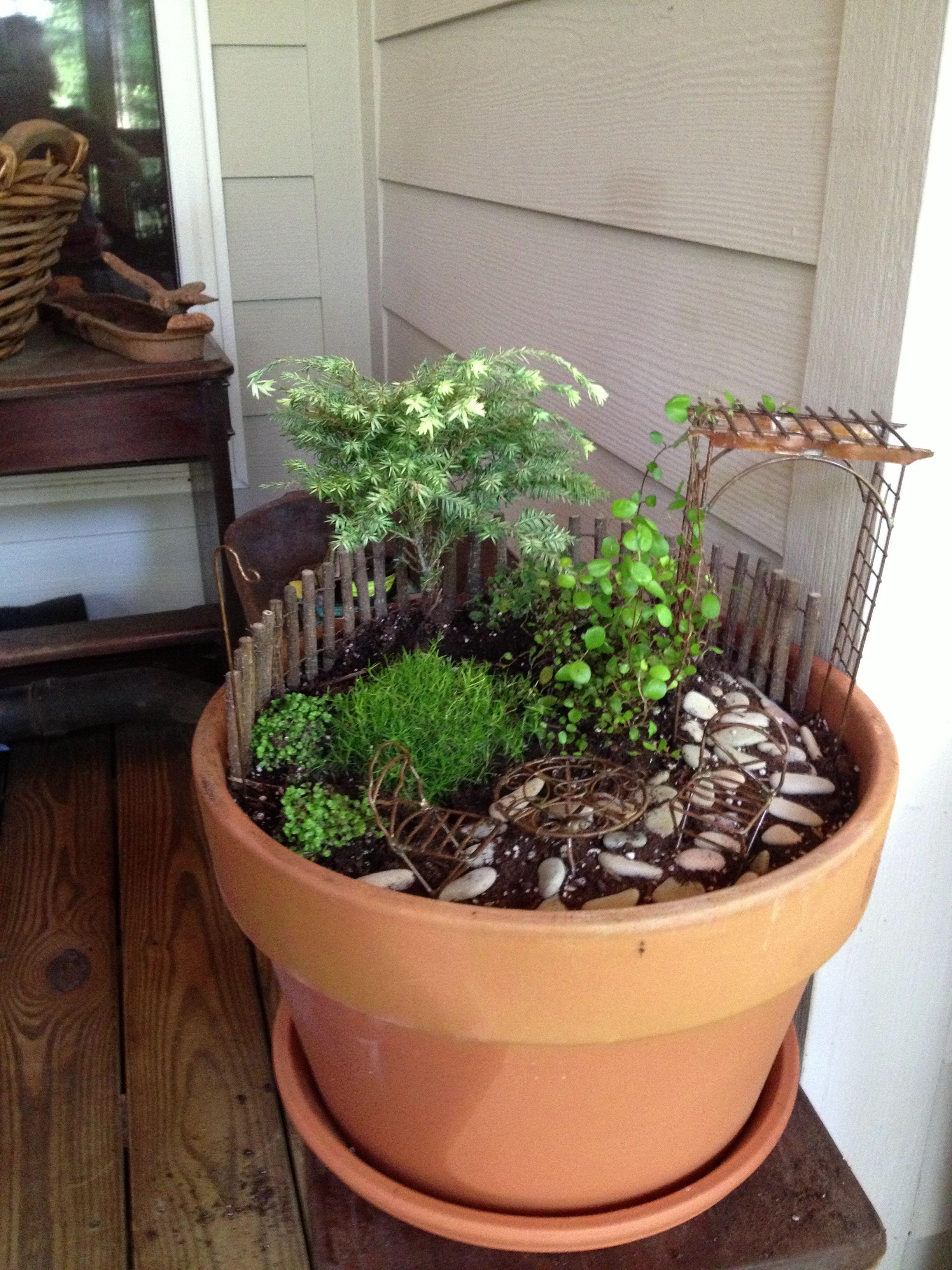 Miniature Garden...featuring Jeremie Products.
