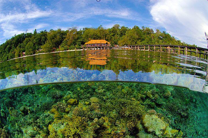 Walea dive resort ampana sulawesi tengah favorite places - Walea dive resort ...