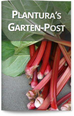 Igel im Herbst unterstützen – Plantura