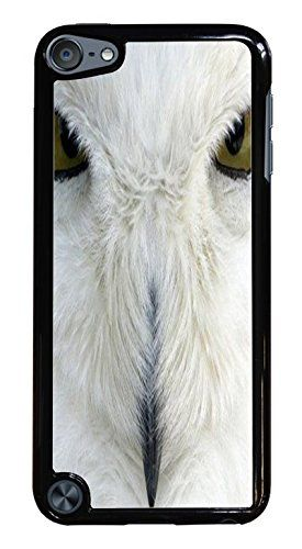 Trendy Accessories White Owl Up Close Picture Design Print Black Hardshell Case for iPod Touch 5G Trendy Accessories http://www.amazon.com/dp/B00QRLZDD0/ref=cm_sw_r_pi_dp_t164ub051G1TR