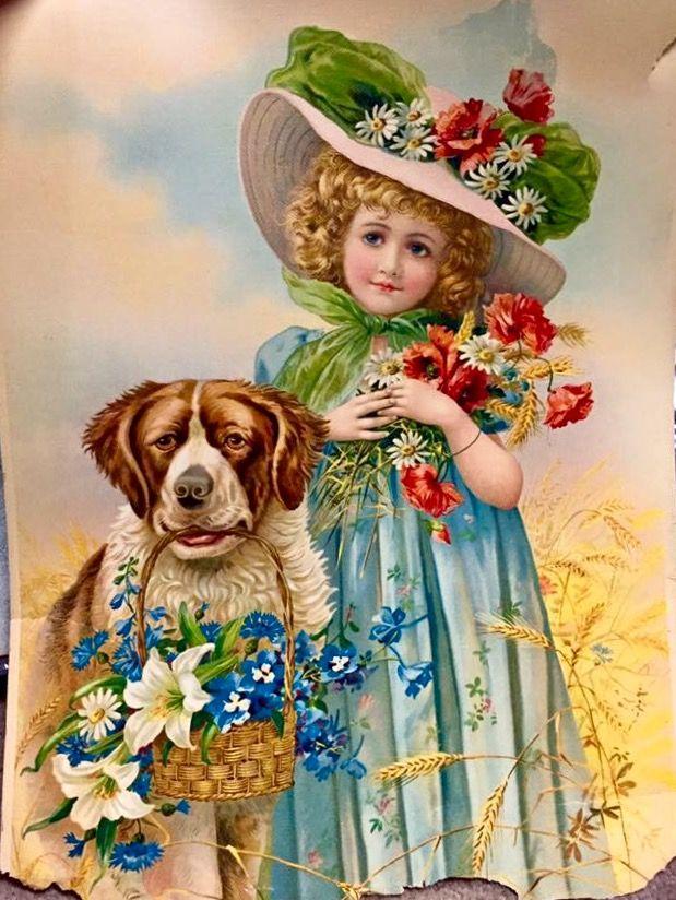 Girl with her Saint Bernard dog and flowers
