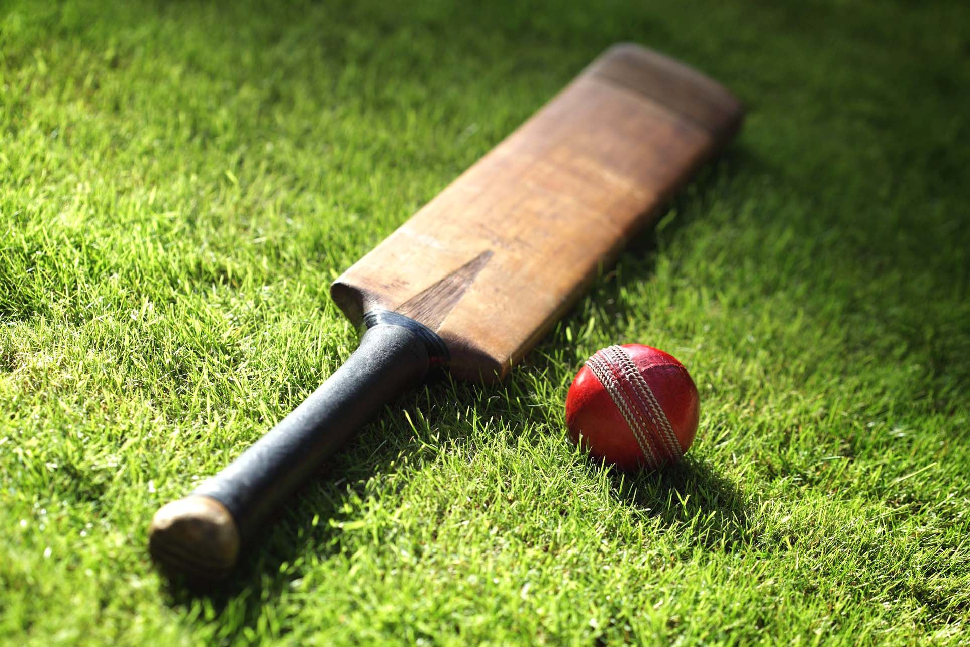 Cricket Wallpaper - HD Wallpapers Backgrounds of Your Choice