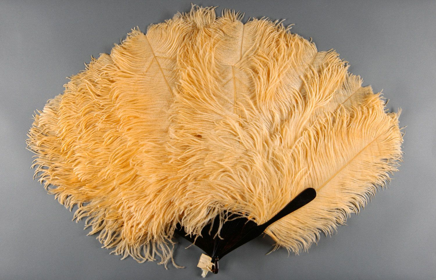 Date: Late 19th - early 20th century Medium: Ostrich feathers; tortoiseshell stick