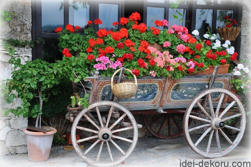 Квітники в бричках, тачках та возах. 19 фото | Дизайн сада ...