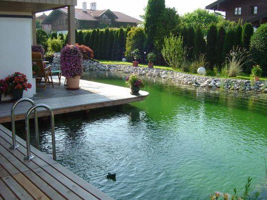 Schwimmteich natural pool schwimmteiche pinterest for Schwimmteich natur