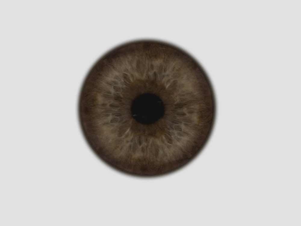 Iris Brown Texture Jpg 1000 750 Eye Texture Iris Iris Eye