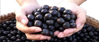 ¡Las bayas de acai son un potente alimento antioxidante! http://semillarium.com/comestibles/52-bayas-acai-polvo-125gr