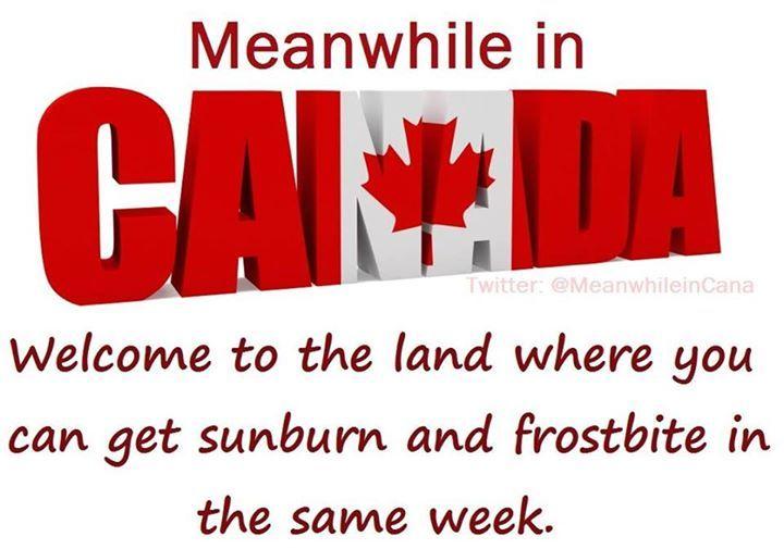Facebook Canada Jokes Meanwhile In Canada Canada Funny