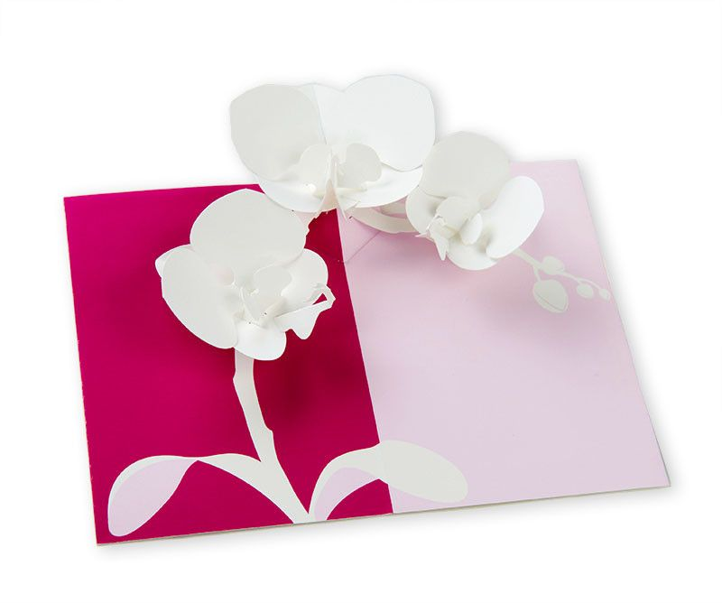 pop up orchid notecard