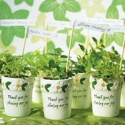Vasos de plantas em miniatura pintados para lembranças de Primeira Comunhão.