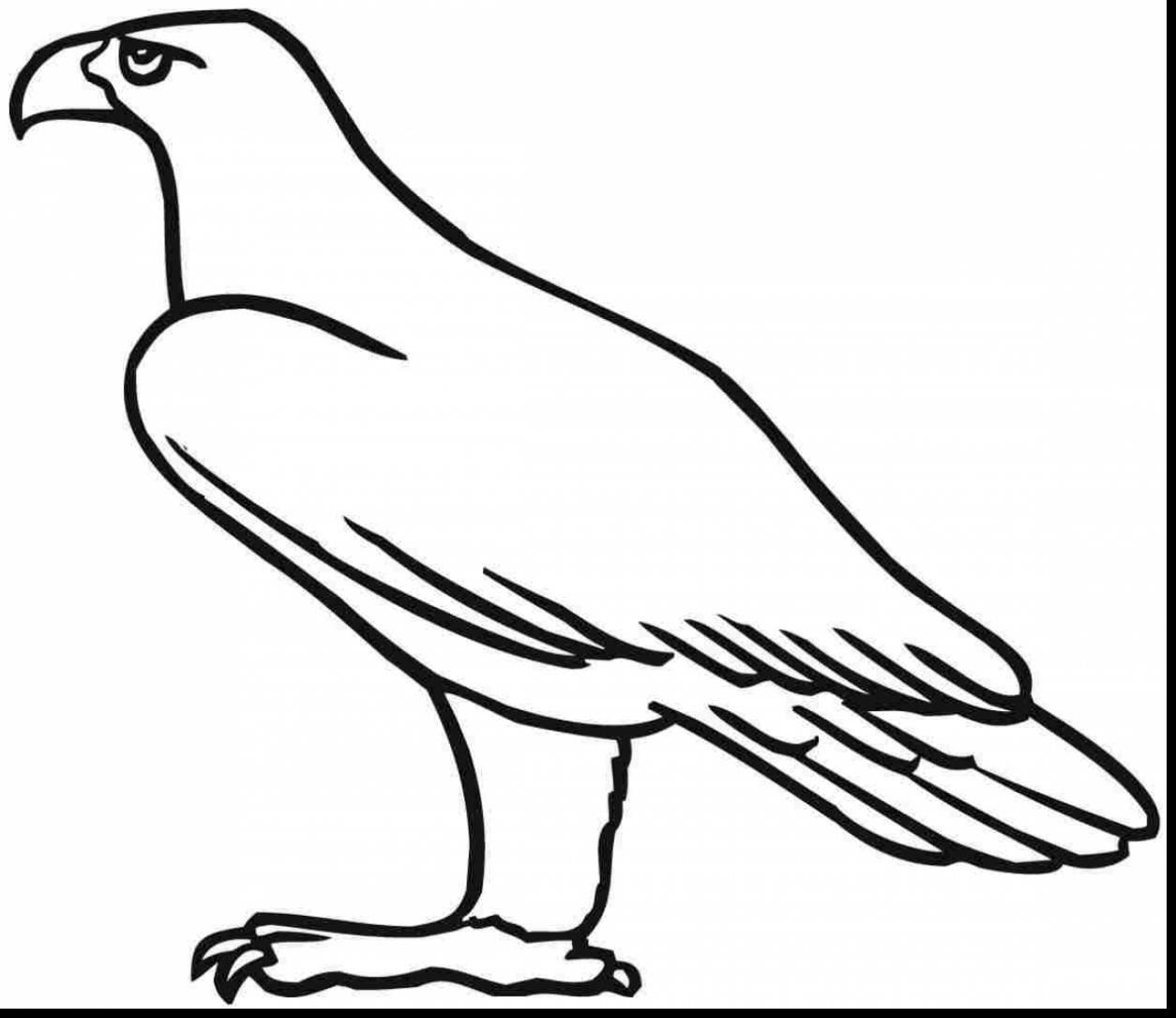 Golden Eagle Coloring Pages | Eagle Coloring Pages | Pinterest