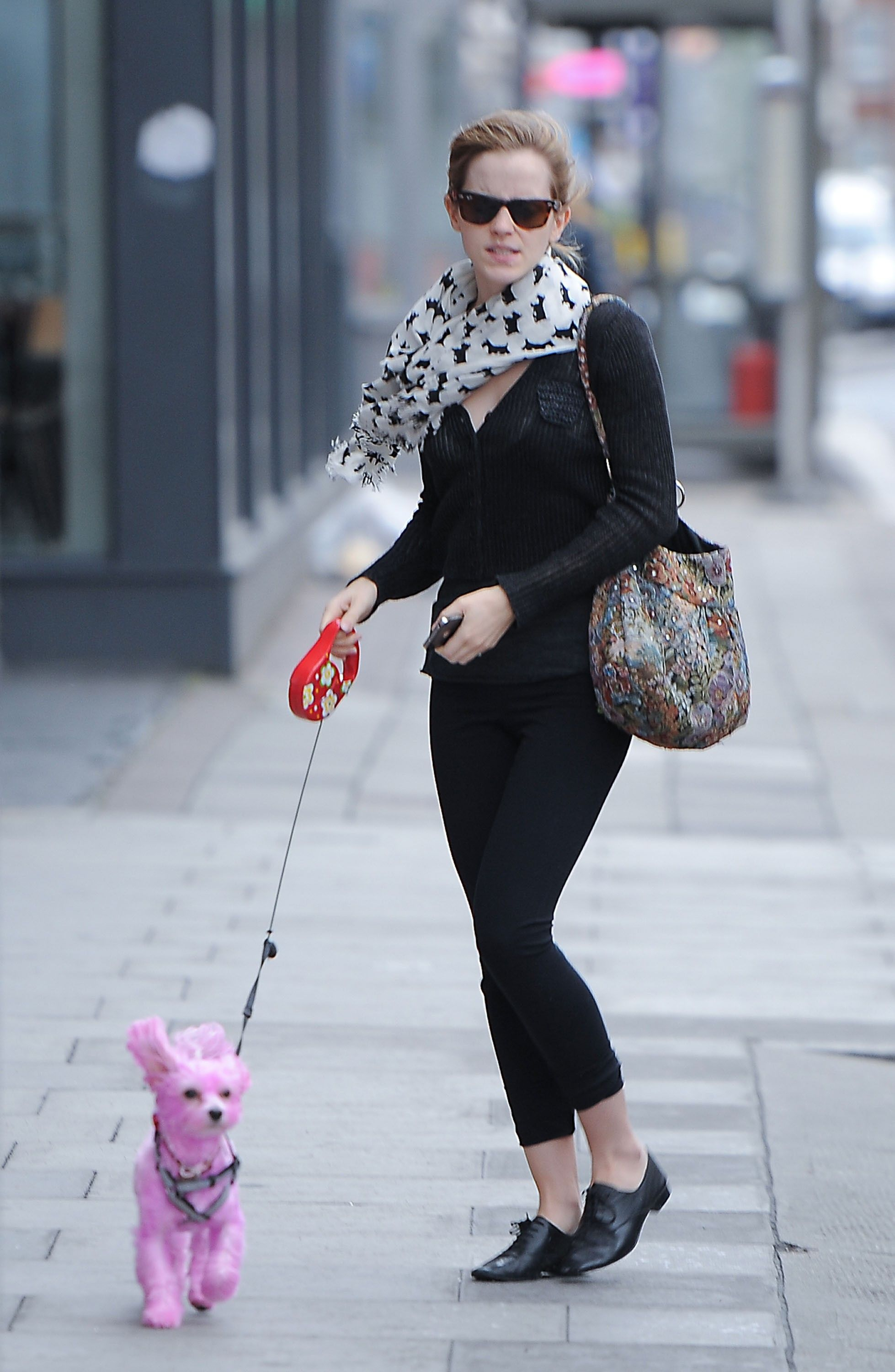 Celebrities and Their Dyed Dogs - Courtney_stodden_dog - 4 | Girls ...