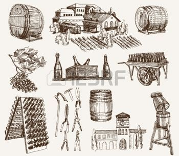 winery: winemaking  the production of sparkling wines