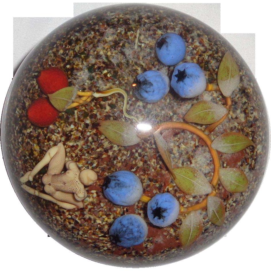 Blueberries partnersuche