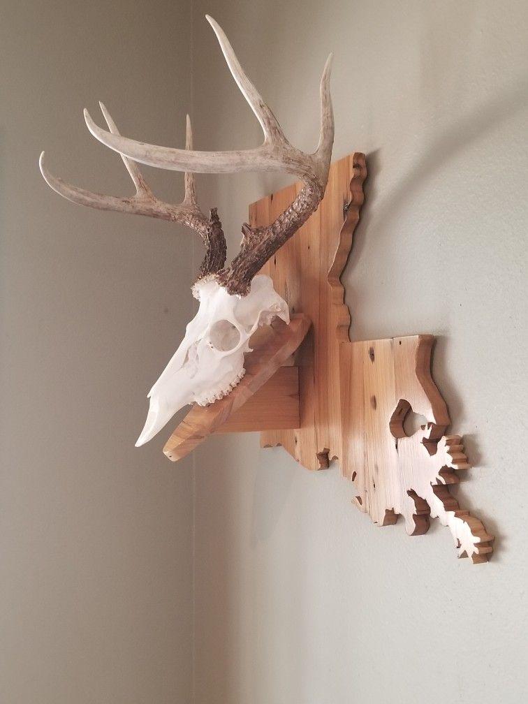Deer plaque Deer mounts, Deer, Antlers