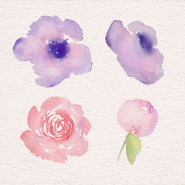 Turning A Watercolor Flower Into A Procreate Brush Lettering