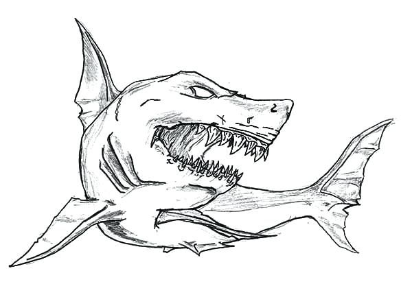 Megalodon Coloring Pages To Print Shark Coloring Pages Shark Drawing Shark Art