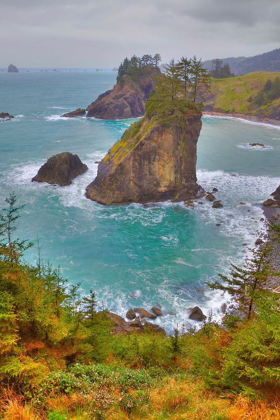 ~~Arch Rock Point Northwest Overlook - Tillamook County, Oregon Coast by Bill Edwards Photography~~