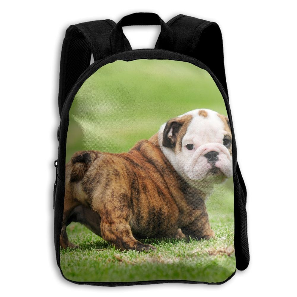 Jhxzml English Bulldog Puppy Student School Backpack Elementary