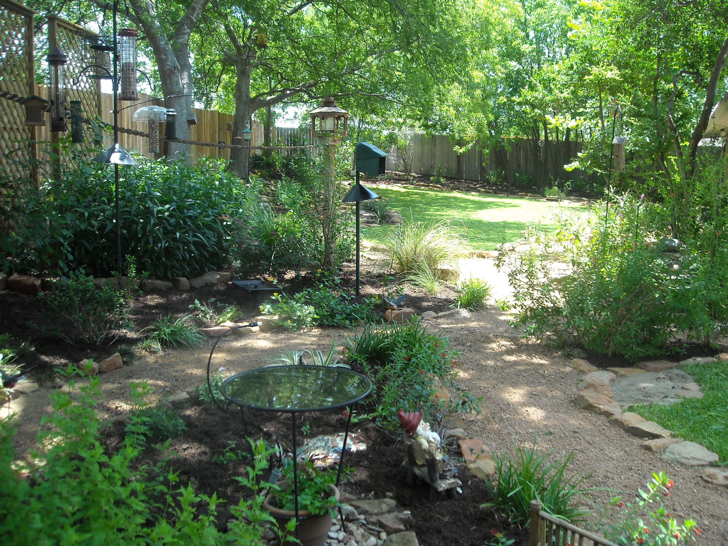 Backyard landscape - bird lover's paradise with walking ... on Birds Backyard Landscapes id=54597