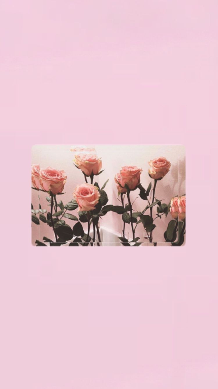 Iphone Wallpapers Pinterest Esina1 In 2019 Aesthetic