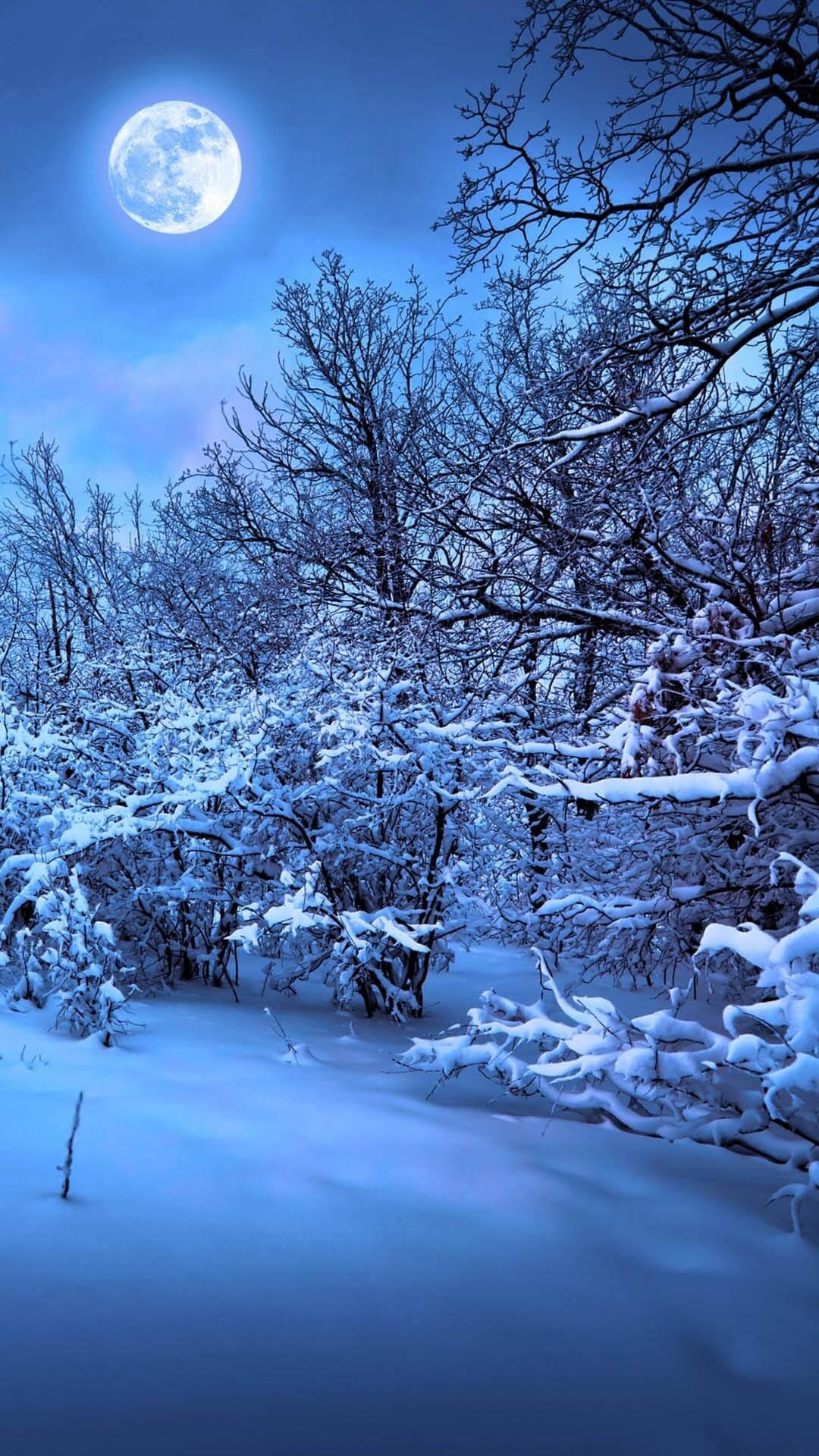 Скачать Обои На Андроид Зима