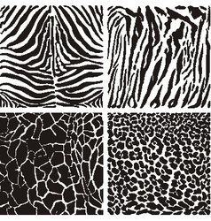 Animal black and white background vector