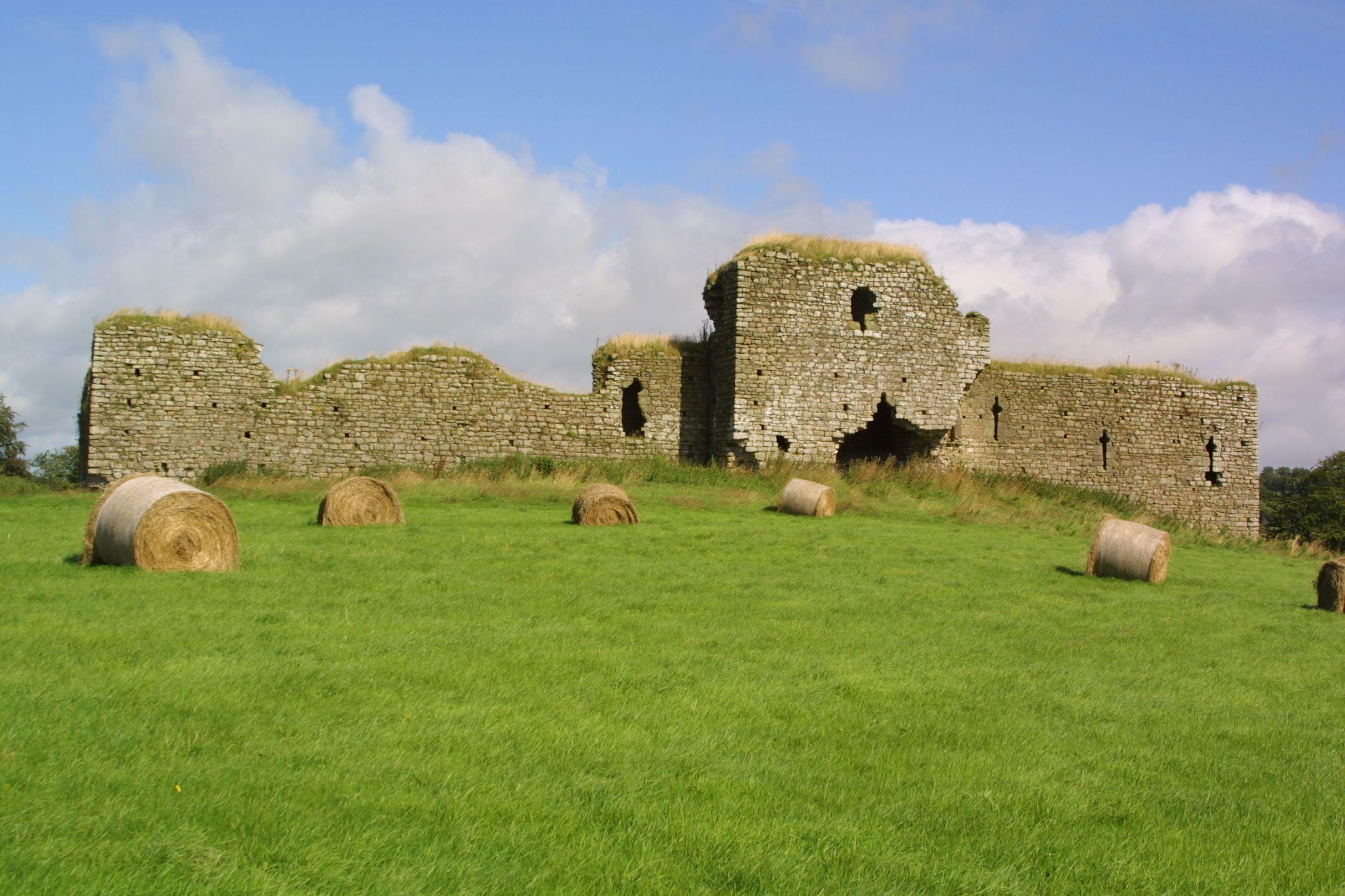 Ballymoon-Castle-1.jpg (2160×1440)