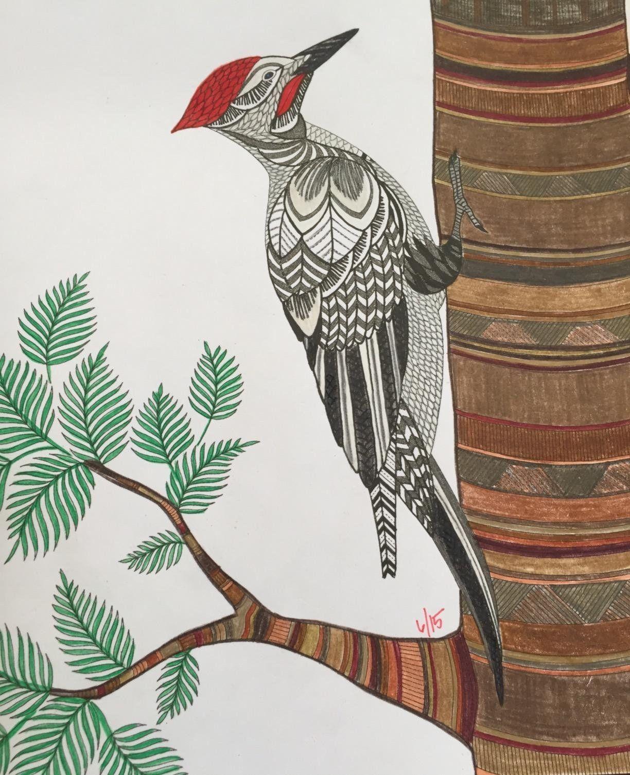 Animal Kingdom Color Me Draw Millie Marotta 9781454709107 Amazon