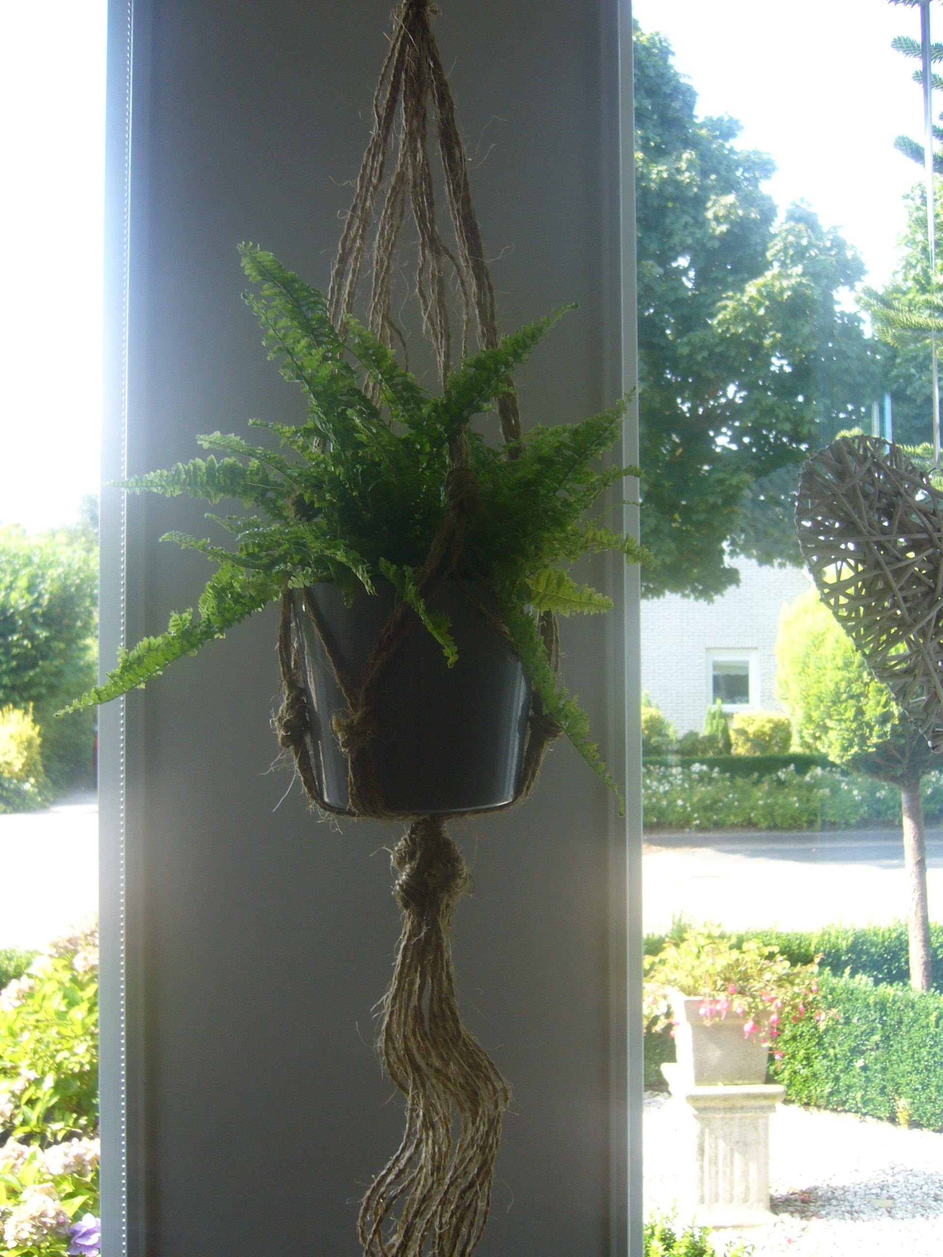 Glazen Schaal Op Voet Action.Superblij Mee Planthanger Gemaakt Met Touw Van De Action