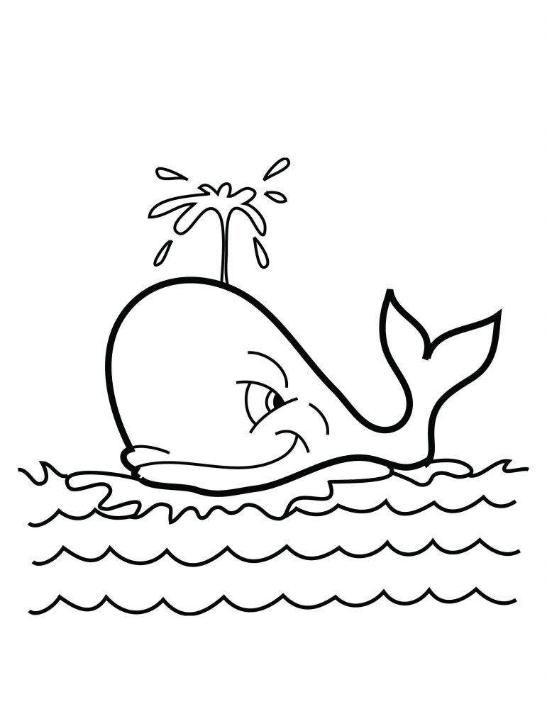 Free Printable Whale Coloring Pages For Kids Wal Whale