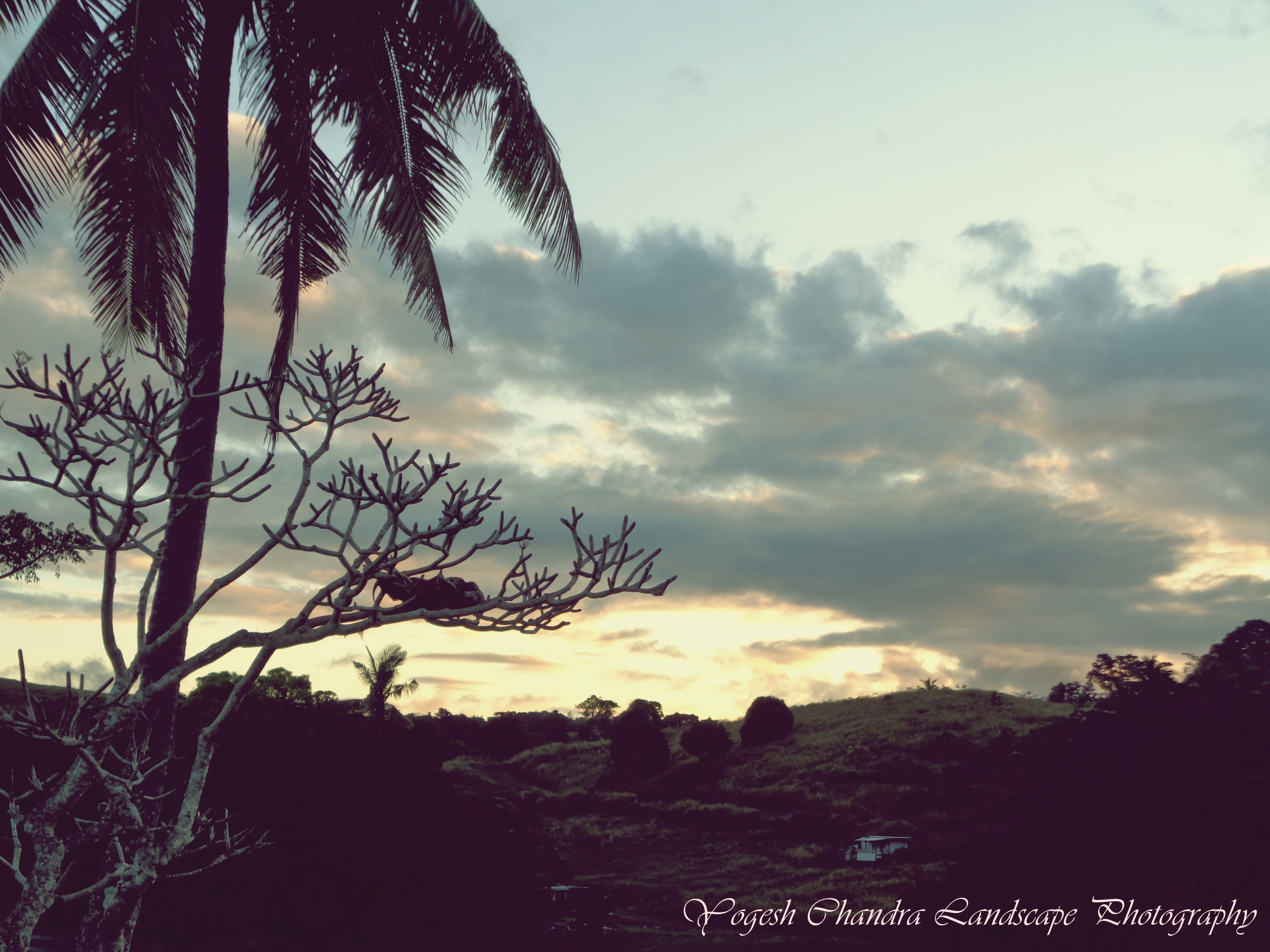 New Piece Landscapephotography Passion Nature Fiji Landscape Photography Fiction Writing Walking In Nature