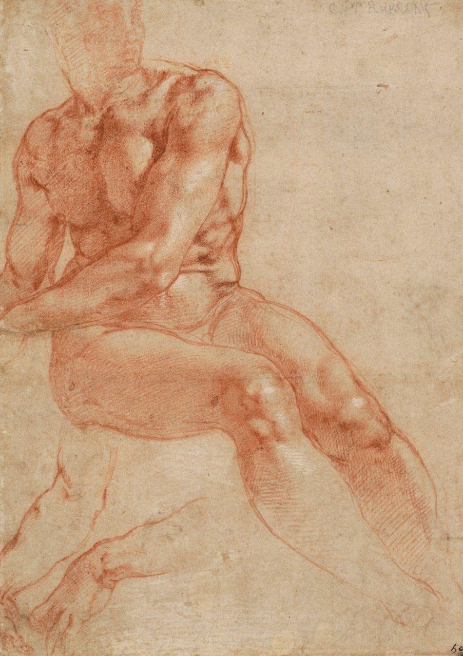 Микеланджело Буонарроти - Рисунок сидящей мужской обнажённой фигуры ...