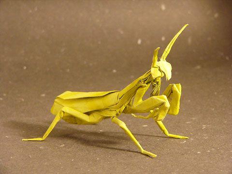 """""""Praying mantis"""" by Satoshi Kamiya"""