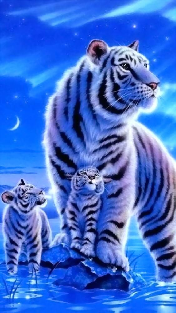 White Tiger Portrait Best Htc M9 Wallpapers Wild Animal Wallpaper Animals Wild Pet Tiger