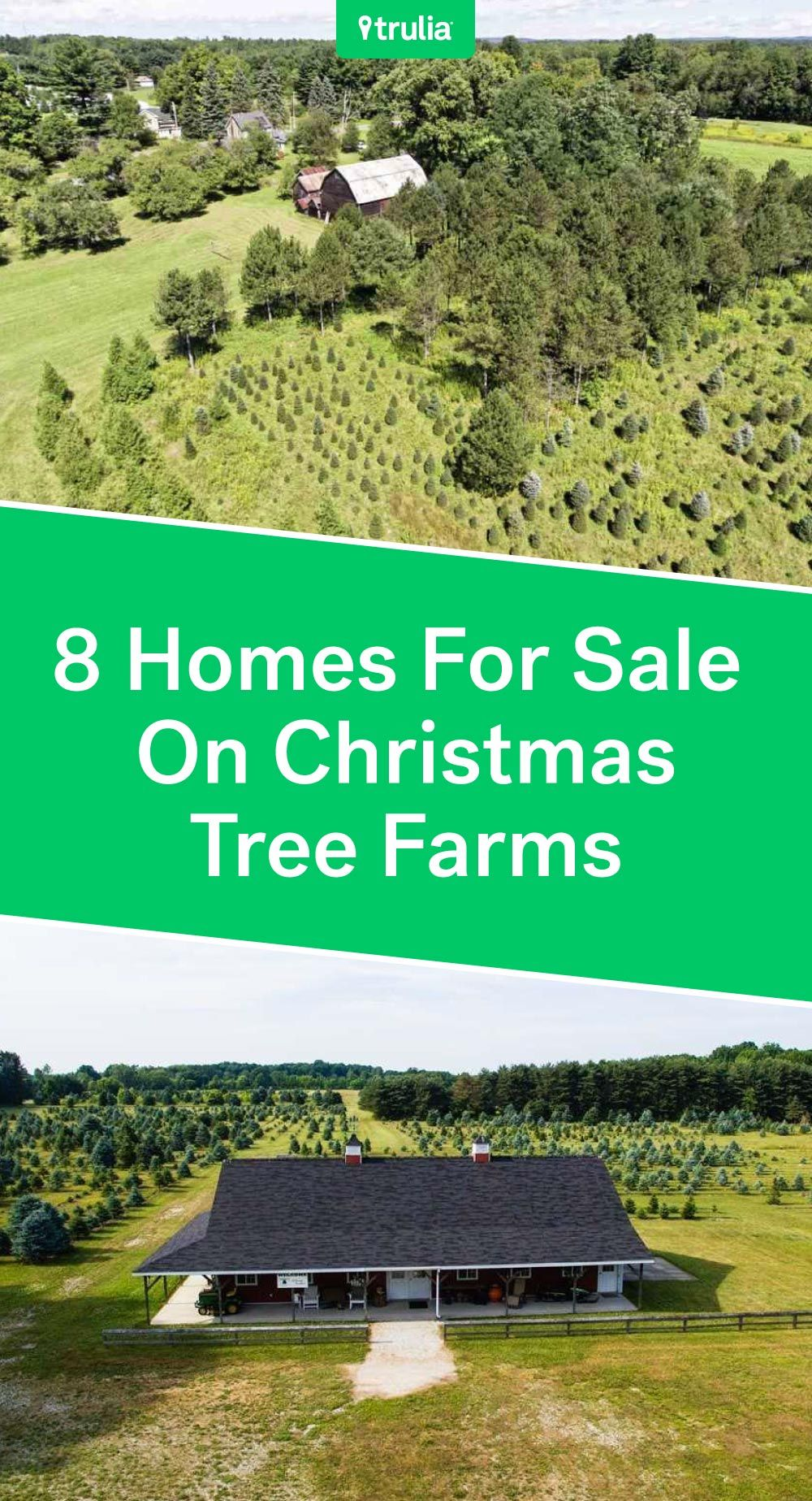 8 Christmas Tree Farm Homes For Sale Life At Home Trulia Blog Christmas Tree Farm Tree Farms Farmhouse Christmas Tree