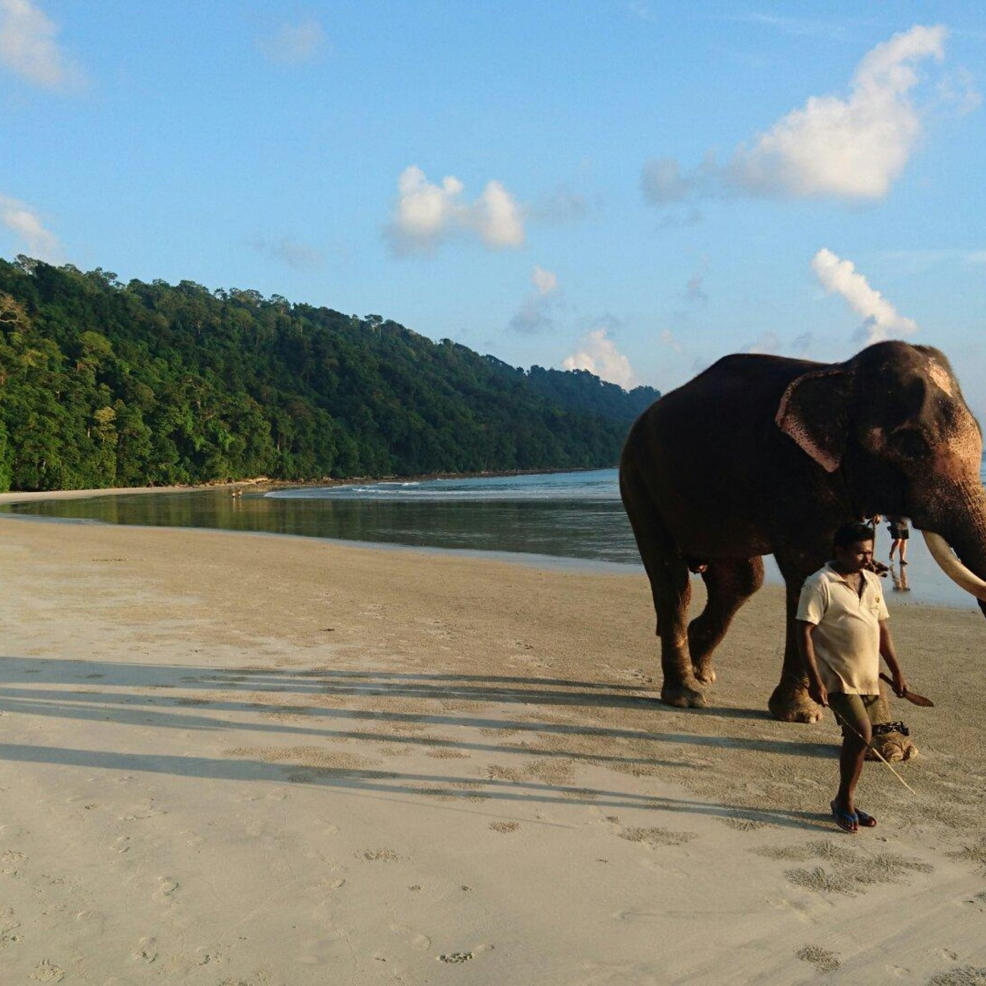 Havelock Island: Elephant Beach Is One Of The Popular Beaches Of Asia